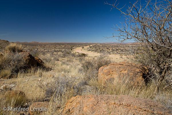 2018_Kalahari_5D-2614.jpg