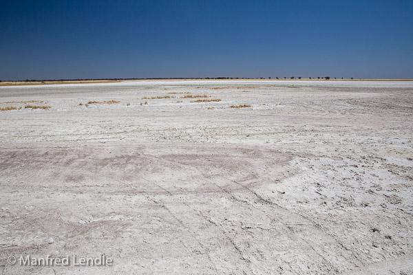 2018_Kalahari_5D-9519.jpg