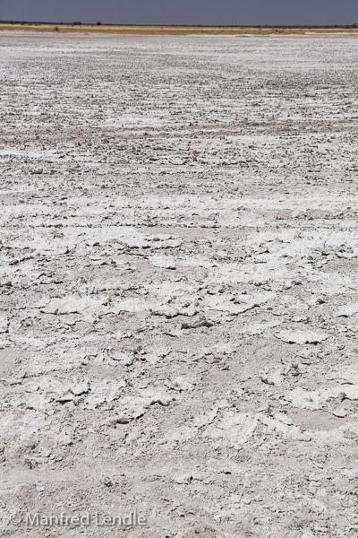 2018_Kalahari_5D-9520.jpg