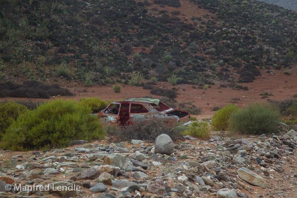 2018_Kalahari_1D-2752.jpg