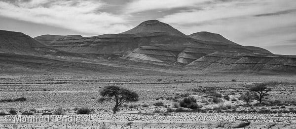 2018_Kalahari_1D-1464-Bearbeitet.jpg