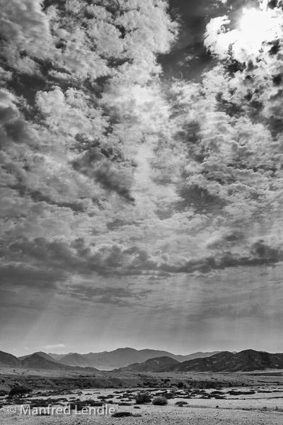 2018_Kalahari_1D-2238-Bearbeitet.jpg