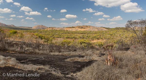 2019_Zambia_5D-1381-Pano.jpg