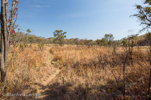 2019_Zambia_1D-1727.jpg