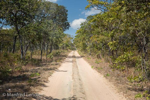 2019_Zambia_5D-1322.jpg