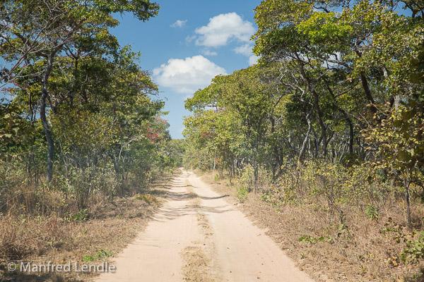 2019_Zambia_5D-1324.jpg