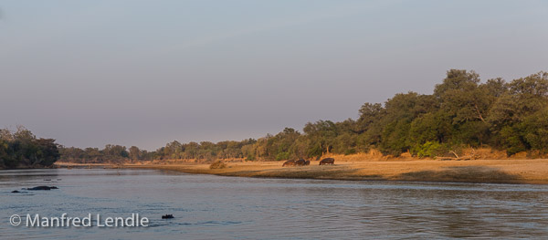 2019_Zambia_5D-1856.jpg