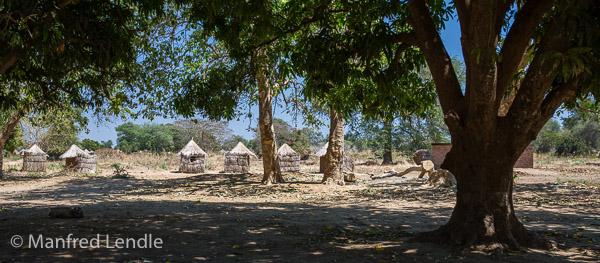 2019_Zambia_5D-2569.jpg