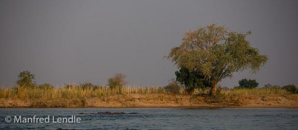 2019_Zambia_5D-5620.jpg
