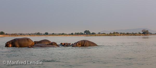 2019_Zambia_5D-5577.jpg