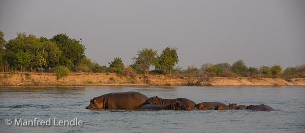 2019_Zambia_5D-5584.jpg