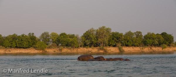 2019_Zambia_5D-5589.jpg