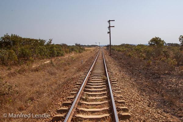 2019_Zambia_1D-2240.jpg