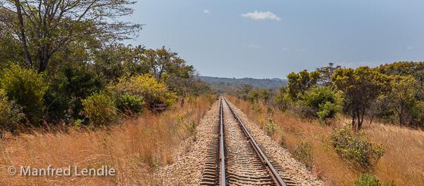 2019_Zambia_5D-1291.jpg