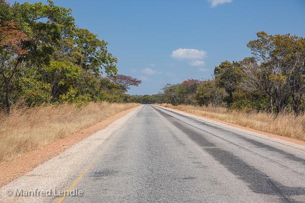 2019_Zambia_5D-1294.jpg