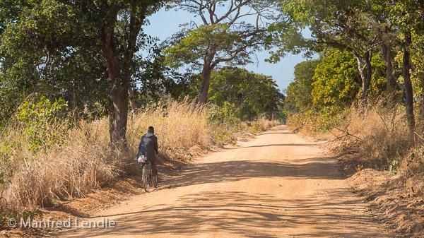 2019_Zambia_5D-1208.jpg