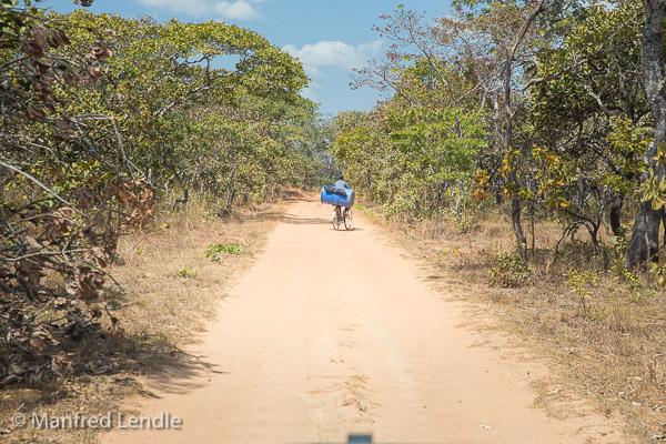 2019_Zambia_5D-1325.jpg