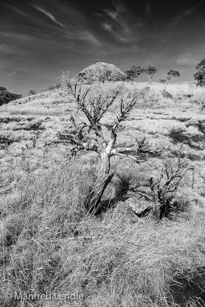 2019_Zambia_1D-1775-Bearbeitet.jpg
