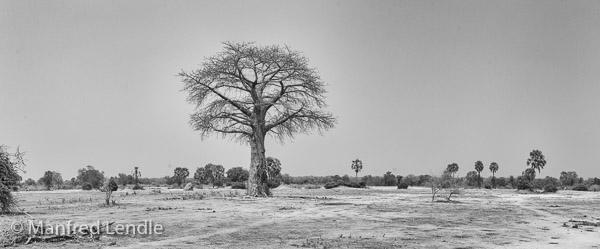 2019_Zambia_1D-6740-Pano-Bearbeitet.jpg