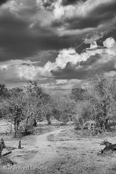2019_Zambia_5D-2417-Bearbeitet.jpg